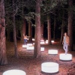 Lenovo brand image: lights in the forest