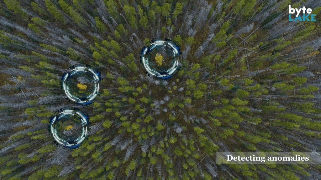 byteLAKE anomaly detection in action over a large forest